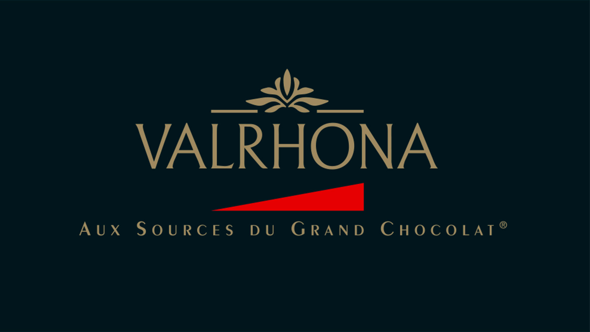 logo valrhona cartoon.design